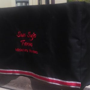 san sujo table cover 2
